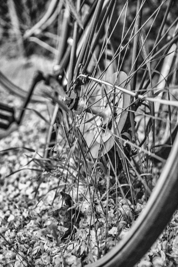 BikeIII